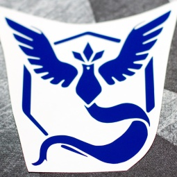 pokemon decal 4