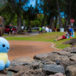 squirtle light 3