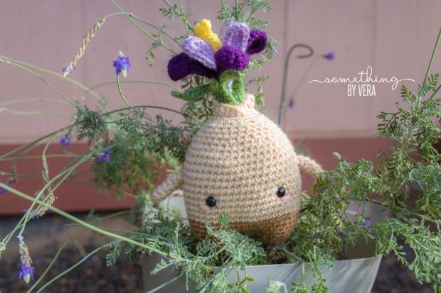 carla-the-crocus-bulb