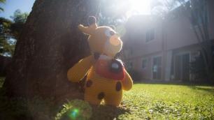 kenny-giraffe-3