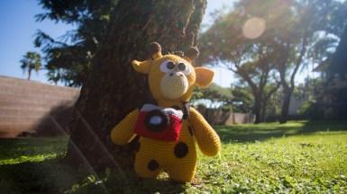 kenny-giraffe-4