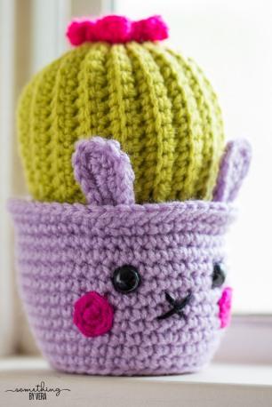 Close up of Cactus Bunny 1