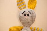 clover the bunny4