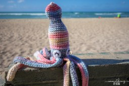squid3