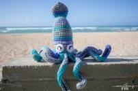 squid4