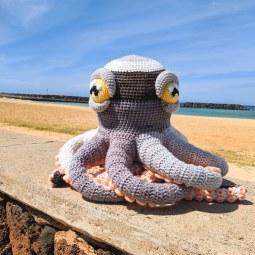 apollo octopus3