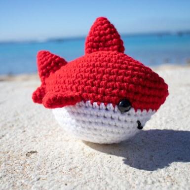 chum the shark2